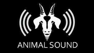 What is it like to be a goat?